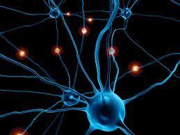 Νανοτρόφιμα, ποιὰ καταναλώνουμε στὴν Εὐρώπη καὶ στὴν Ἑλλάδα-Τὰ Νανοσωματίδια Καταστρέφουν τὸν ἐγκέφαλο.